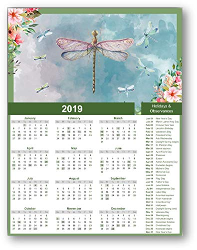 Ramini Brands 2019 Calendar - Dragonflies Watercolor Drawing - 11 x 14 Unframed Calendar Print - Great Gift for Flowers, Dragonfly and Nature Lovers- Perfect Home Office and Girls Locker Decor ()