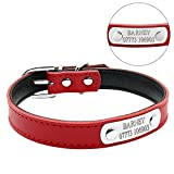 Leather Dog Collar - Didog Adjustable Leather Padded Custom Dog Collar with Engraved Nameplate,Fit Cats and Small Medium Dogs,Red,S Size
