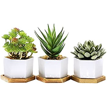 Pack of 3 Small White Ceramic Contemporary Hexagonal Design Succulent Plant Pot/ Cactus Plant Pot With Bamboo Tray