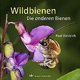 Wildbienen: Die anderen Bienen