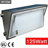led 125 watt light bulbs - 125W LED Wall Pack Light,Super Bright 14000LM,IP68 Waterproof,550~600W HPS MH Bulb Replacement,Outdoor Security LED Lighting Fixture for Building Home Security and Walkways (125Watt)