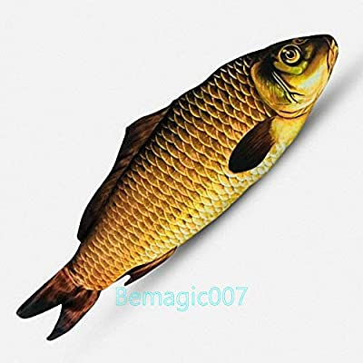Stage Magic Tricks Appearing Fish (28cm), Magic Props,Party Tricks: Toys & Games