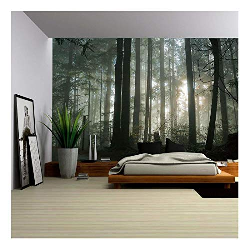 - wall26 - Foggy Forest - Removable Wall Mural | Self-Adhesive Large Wallpaper - 100x144 inches