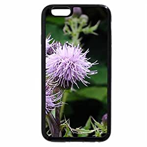 iPhone 6S / iPhone 6 Case (Black) No artificial colorings