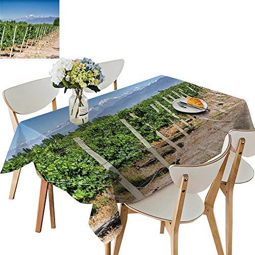 Cordillera One Light - UHOO2018 Decorative Tablecloth Vineyards vol o Aconcagua Cordillera des Mountain r ge in maipu Argentine Province Square/Rectangle Kitchen Tablecloth Picnic Cloth,50 x 78inch
