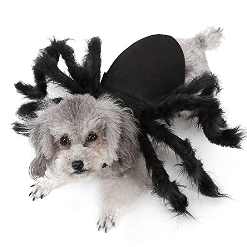 Black Pug Spider Costume (Kvvdi Funny Tarantula Cat Dog Black Spider Halloween Costume for Small or Medium)