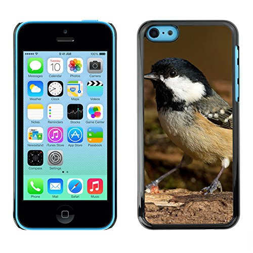 Premio Sottile Slim Cassa Custodia Case Cover Shell // F00008163 oiseau // Apple iPhone 5C