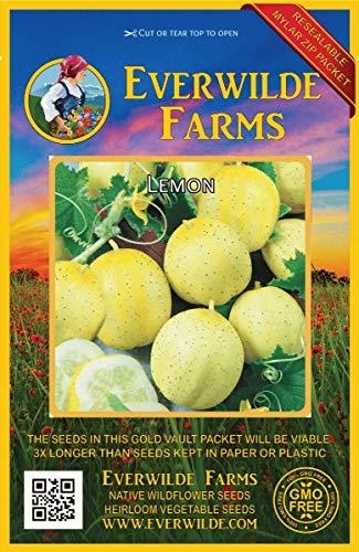 40 Broad Windsor Fava Bean Seeds Everwilde Farms Mylar Seed Packet
