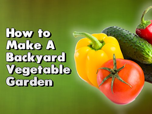 How to Make A Backyard Vegetable Garden