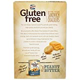 Lance Gluten Free Cheddar Cheese Sandwich Crackers, 5 Ounce