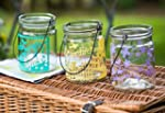 Garden Party 11cm Vintage Glass Jam J...