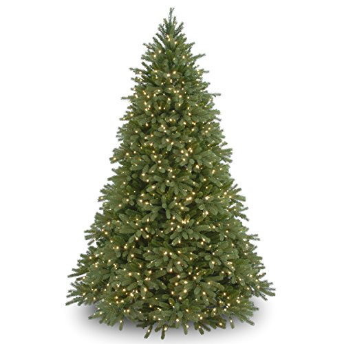 "National Tree 9 Foot ""Feel Real"" Jersey Fraser Medium Fir Tree with 1500 Clear Lights, Hinged (PEJF1-300-90)"