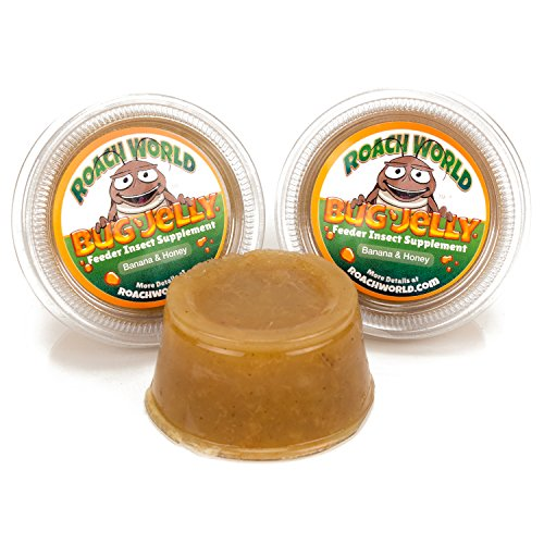(Bug Jelly Roach & Cricket Chow Fruit Food Supplement (Honey Banana, 3 Pack))