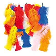 Long Coloured Craft Feathers for Children to add to Collage Models Hats and Costumes (Per pack)