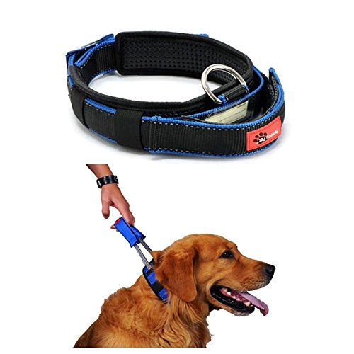 Cheap Lifeunion Mesh Padded Nylon Webbing No Escape Pet Sports Dog Tag Collar and Convenient Retractable Leash for Walking (M)