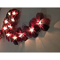 Hibiscus Flowers 20 Light Bulbs Lighting String Lantern for Velentine, Wedding, Patio, Garden, Garland, Indoor Outdoor Decoration, Christmas Tree Decoration