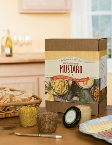 Deluxe Homemade Mustard Makes Styles