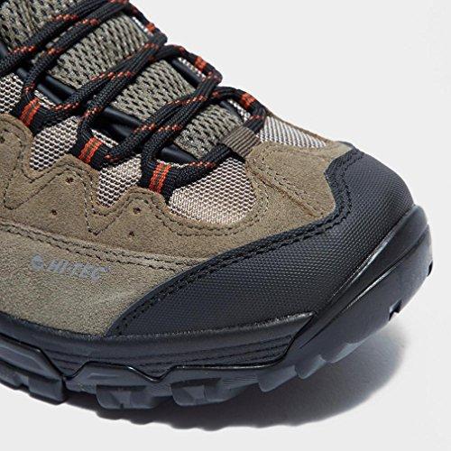 Hallo Tec OX Belmont Low Wasserdicht Mã¤Nner-Walking-Schuhe, Braun, 41