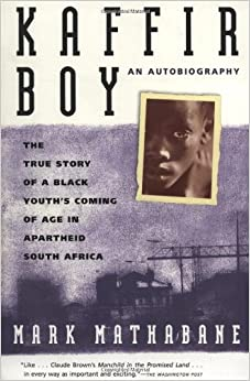 Autobiographical elements in the novel black boy