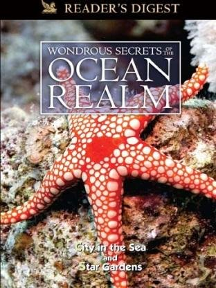 wondrous-secrets-of-the-ocean-realm-city-in-the-sea-star-gardens