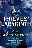 Book Cover for The Thieves' Labyrinth