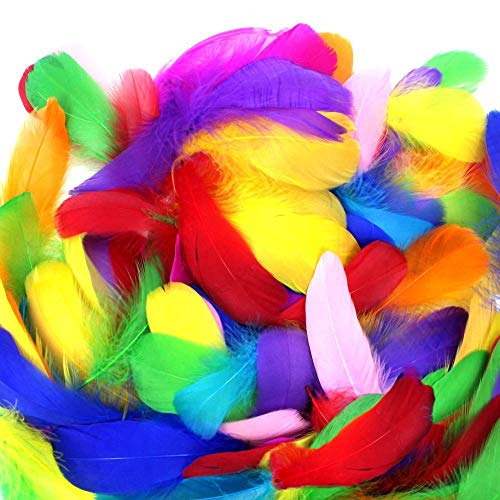 Yecho 300 Pcs Colorful DIY Feathers, Decor Feathers for DIY Craft Clothing Wedding Home Party Decorations -