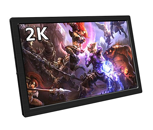 Portable Gaming Monitor, 10.1 Inch 2K Resolution IPS QHD Lcd Display With Dual Hdmi Input,USB Powered for XBOX ONE S, XBOX ONE, PS4, PS3, Xbox 360, Raspberry Pi,Mini PC,FPV