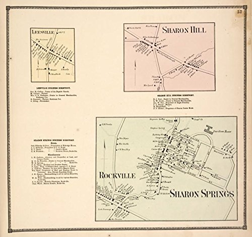 Historic 1866 Map | Leesville [Village]; Leesville Business Directory. ; Sharon Spri | Antique Vintage Map Reproduction