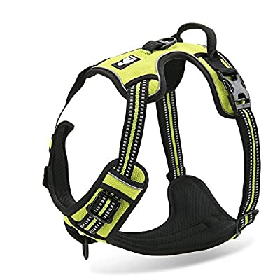 Truelove Front Range Dog Harness. 3M Reflective Outdoor Pet Vest With Handle.