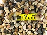 RG 1 Pack: Polished Mixed Color Stones Small Decorative River Rock Stones 1LBS (Small)