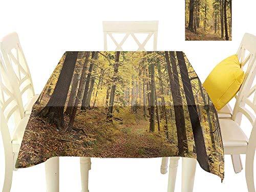 WilliamsDecor Outdoor Tablecloth Woodland,Foggy Autumn Morning Mist Table Cloth Cover W 50