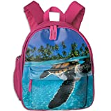 Turtles Images Travel School Backpack Teens Kids