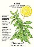 Mrs. Burns Lemon Basil Seeds - 750 mg - Heirloom