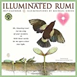 img - for The Illuminated Rumi 2017 Wall Calendar book / textbook / text book