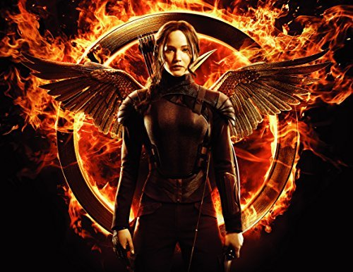 The Hunger Games Mockingjay Katniss Edible Image Photo Sugar Frosting Icing Cake Topper Sheet Birthday Party - 1/4 Sheet - 76321 -