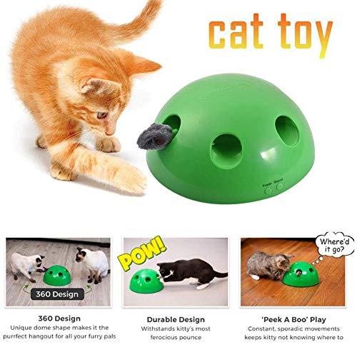 JUNMAO Cat Interactive Toys