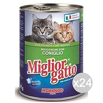 Miglior Gatto Juego 24 Mejor Gato Grasa Conejo 400 gr. Comida para Gatos: Amazon.es: Productos para mascotas