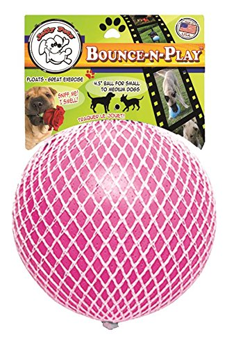 Jolly Pets 881155 Bounce N Play 4 5 Inch