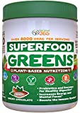 Organic Superfood Greens: CoCoa Chocolate Flavor, Doctor-Formulated, Vitamins & Minerals, Gluten Free, Vegan, Whole Food Powder – Red & Green Fruits & Veggies, Probiotics, Digestive Enzymes, & More