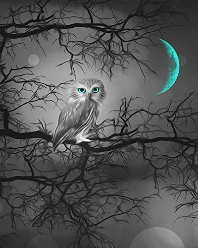 - Black White Teal Wall Art, Owl On Tree Branch, Moon, Bedroom Teal Wall Art, Littlepiecreations Original Handmade USA Photo Artwork, 8x10 Print with 11x14 White Mat, (Fits inside a 11x14 Picture Frame)