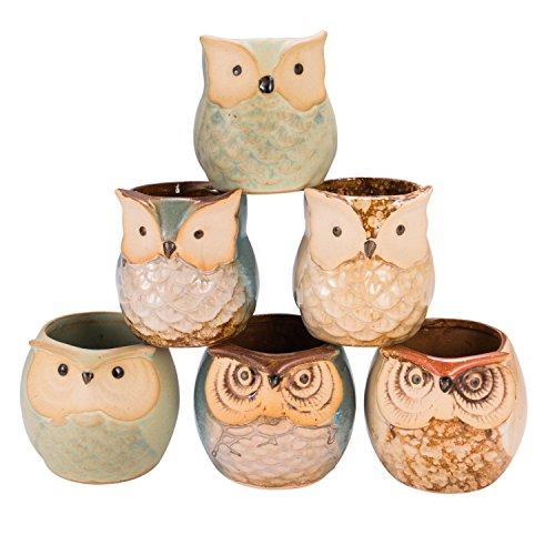occer 6 Pcs 2.5 Inches Mini Owl Pots Succulents Bonsai Plant pots,Cute Flower Cactus Ceramic Pot,Container Planter with a Hole,Perfect for Home Decoration,Office Desk,Kitchen Counter, Best Gifts Idea