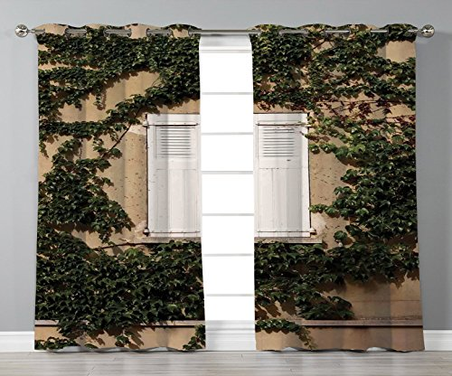 Stylish Window Curtains,Shutters Decor,Cultural Ancient Mediterranean Wood Window Shutter Surrounded by Ivy Image Print,Ecru White Green,2 Panel Set Window Drapes,for Living Room Bedroom Kitchen Cafe from iPrint