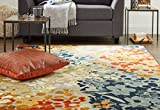 Cheap Mohawk Home Aurora Radiance Abstract Floral Printed Area Rug, 5'x7′, Multicolor