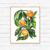 paint colors for kitchens HippieHoppy - Oranges Fruit - Kitchen Wall Decor - Colorful Fruits - Watercolor Wall Art - Summer Giclee Print for Dining Room - UNFRAMED