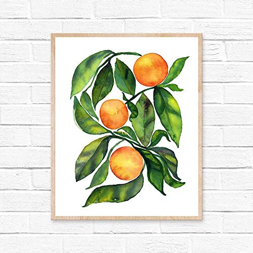 HippieHoppy - Oranges Fruit - Kitchen Wall Decor - Colorful Fruits - Watercolor Wall Art - Summer Giclee Print for Dining Room - UNFRAMED