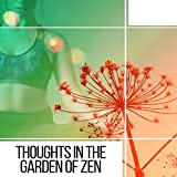 Thoughts in the Garden of Zen - Thinking of Existence, Thoughtful Man, Illuminated Man, Cope with Stress, Smooth Energy, Strength of Mind, Journey into Yourself