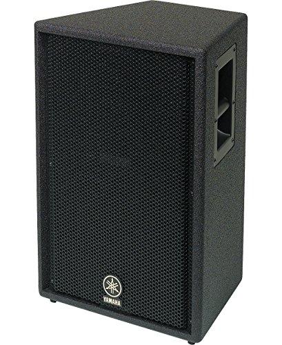 Club Series Concert Speaker (Yamaha C112V 12
