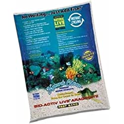 Worldwide Imports AWWA20701 4-Piece Live Aragonite Sand for Aquarium Decor, 10-Pound