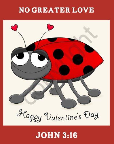 25 Large Valentine Ladybug John 3:16 Bible