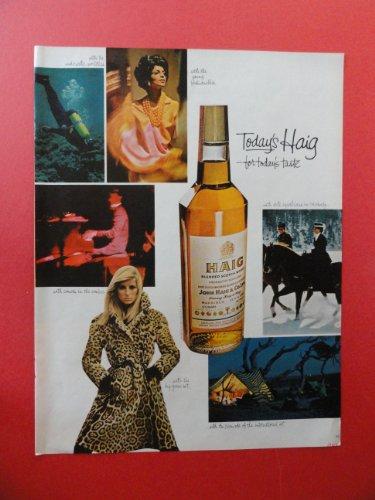 Haig scotch whiskey,1967 Print Ad. (scuba diving/horses/fashion) Original Vintage Magazine Print Art.